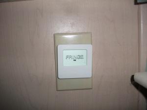 Fringe wall light